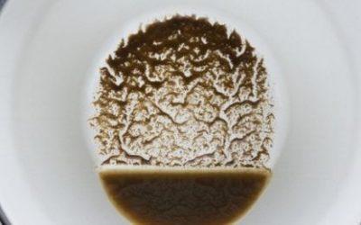 Wahrsagen durch Kaffeesatzlesen